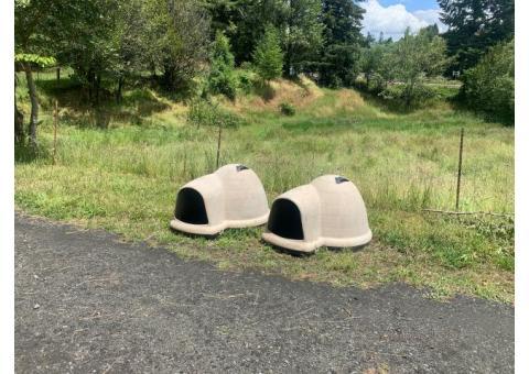 Igloo doghouses